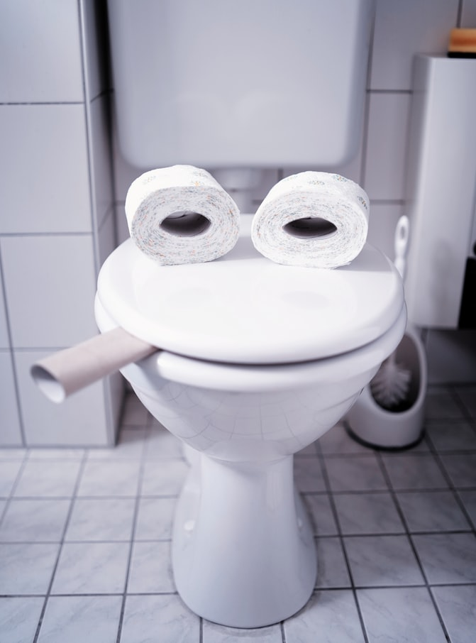 Toilet Seat Sizes